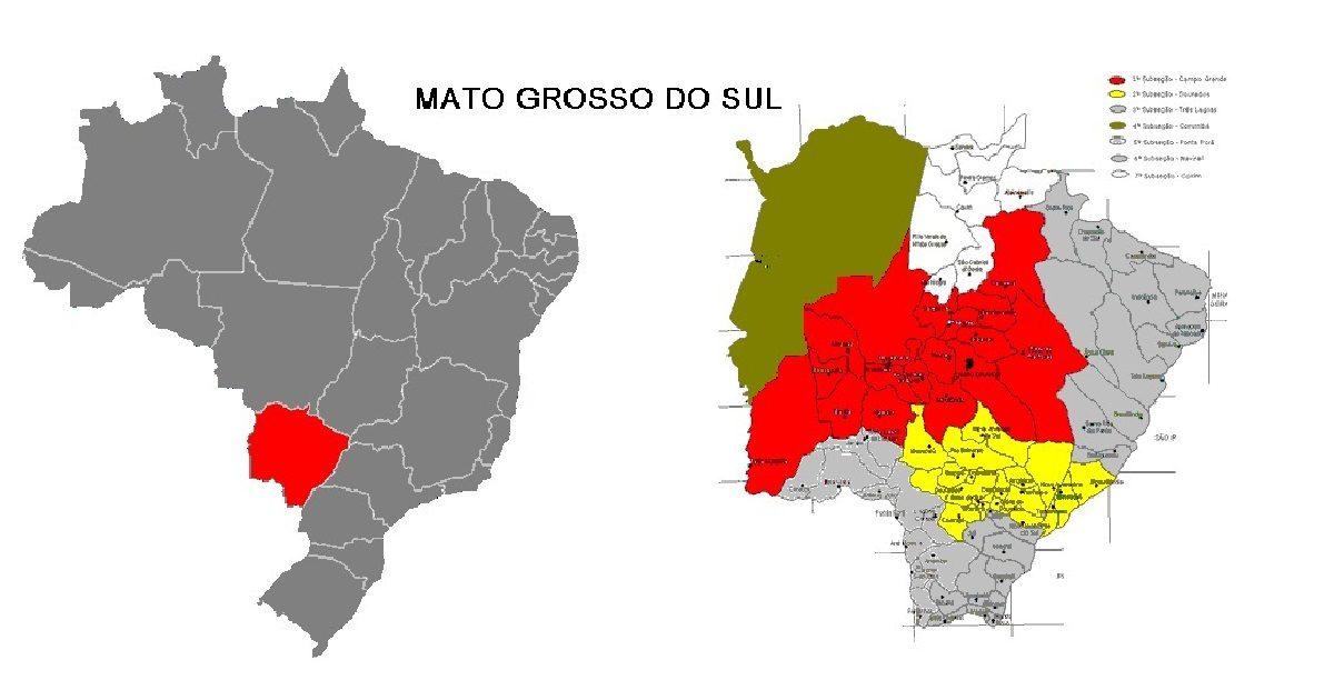 Agora obrigatório em Mato Grosso do Sul, centenas de empresas aderem ao NFC-e